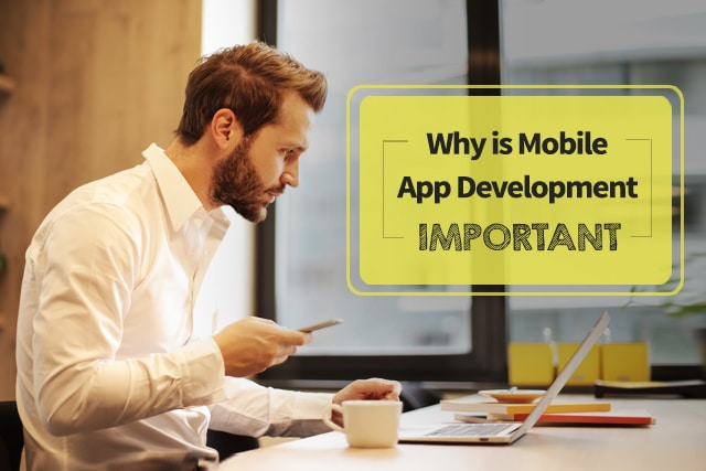 Whay is mobile app development important