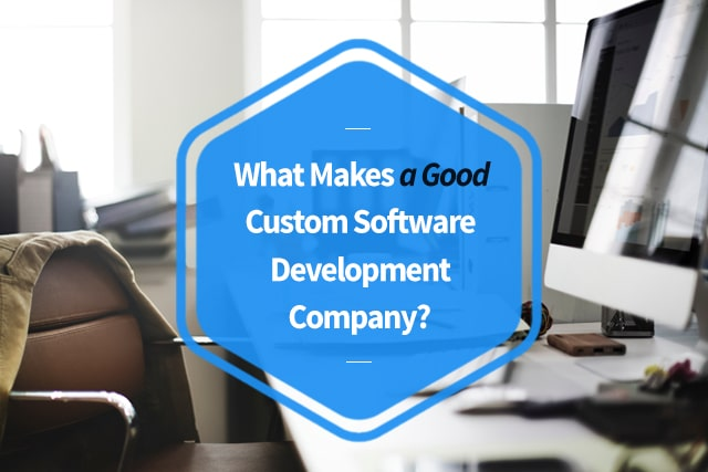 What makes a good custom software development company
